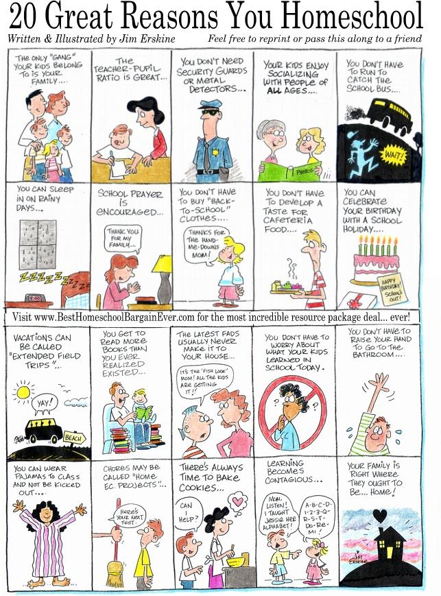 20-great-reasons-you-homeschool1